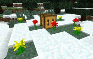 養蜂箱の稼動