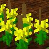 Cropの利用