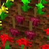 作物の交配